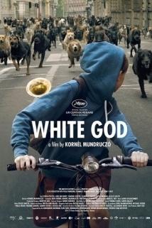 თეთრი ღმერთი White God