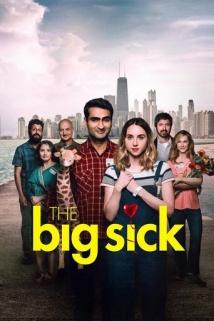 დიდი ავადმყოფობა / The Big Sick
