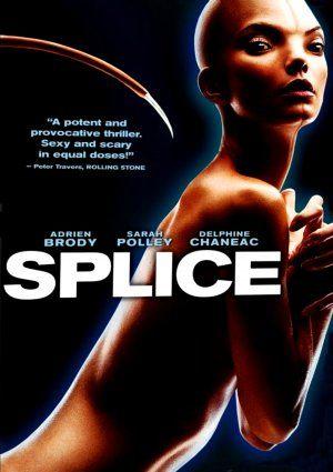 ჰიმერა / Splice
