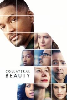 მოჩვენებითი სილამაზე / Collateral Beauty