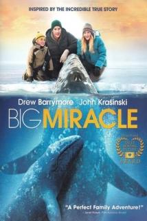 დიდი საოცრება / Big Miracle