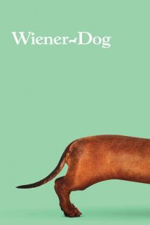 ტაქსა / Wiener-Dog