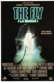 ბუზი / The Fly